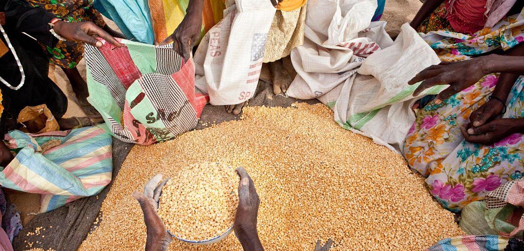 Food crisis in Sahel region of Chad